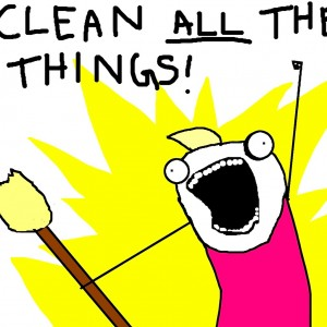misc-clean-all-the-things-l-232